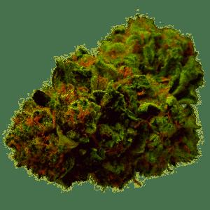 Strawberry Haze Marijuana Strain