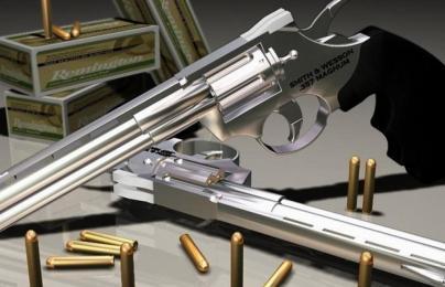 Gun-pistol-ammunition