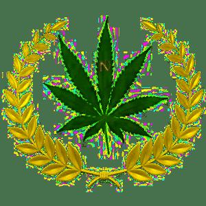 Greek leaves