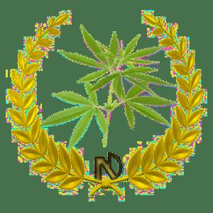 Home Marijuana Grow Series